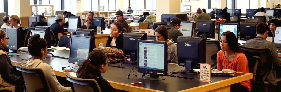 Students using the library computers.