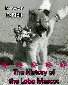 Photo of a puppy with the words Now on Exhibit, The History of the Lobo Mascot